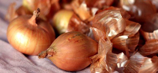 Настойка из шелухи лука улучшит пищеварение