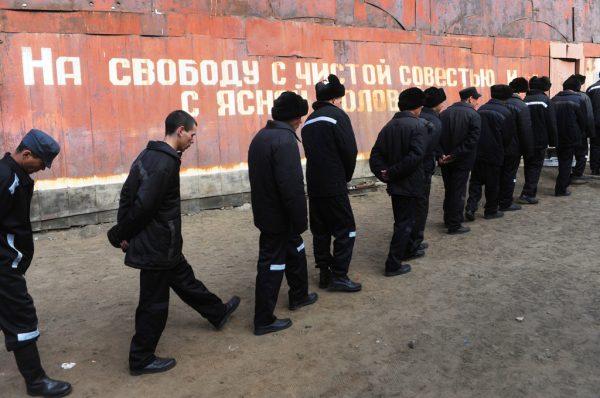 Амнистия 2019 года в России по уголовным делам: последние новости, сроки, закон