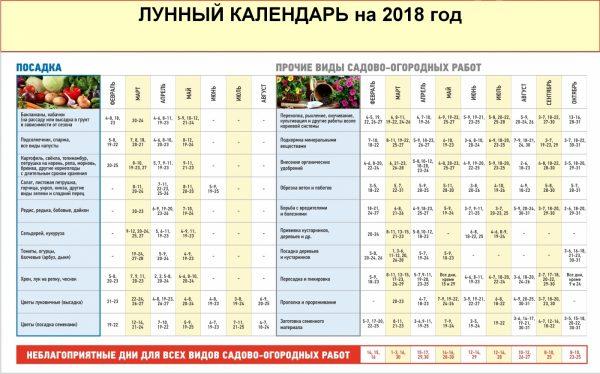 Лунный календарь на 2018 год для посадки семян петунии