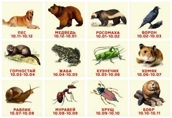 Зодиакальный гороскоп с датами