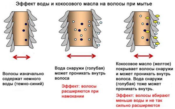Польза кокосового масла для ухода за волосами