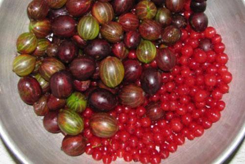 Промыть все ягоды