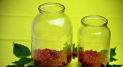 Выложить ягоды в банки