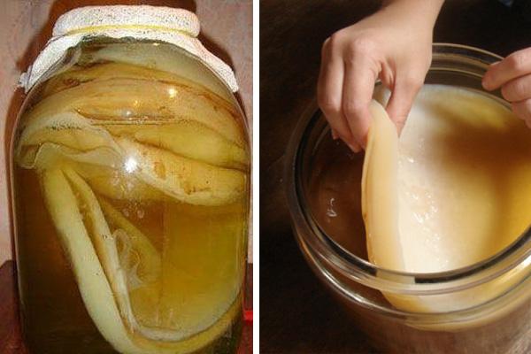 Чайный гриб предотвращает выпадение волос