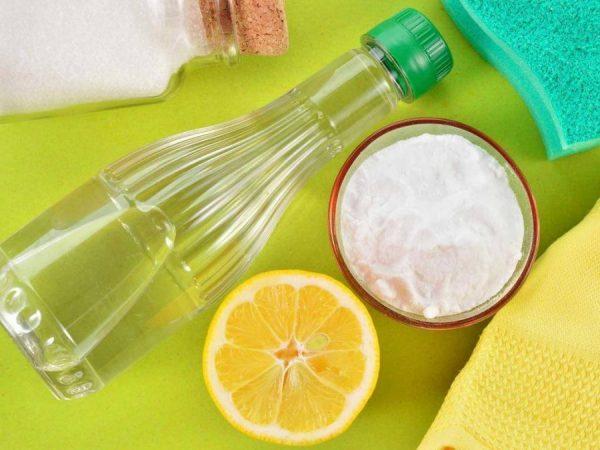 Сок лимона удаляет запах и предоставит обивке приятный аромат цитруса