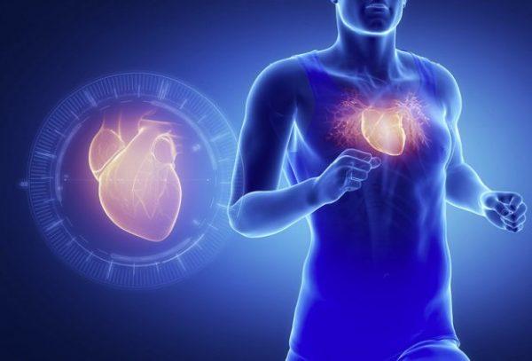 Коэнзим Q10 – помощник для увеличения энергии сердца