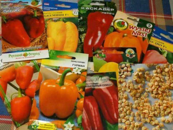 Для посева нужно выбрать качественные семена перца