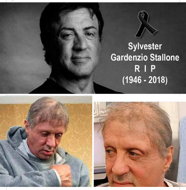 Увидев эти фото многие поклонники подумали, что Сильвестр Сталлоне действительно умер