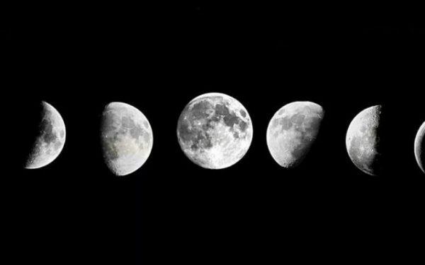 Влияние луны на посадку перца