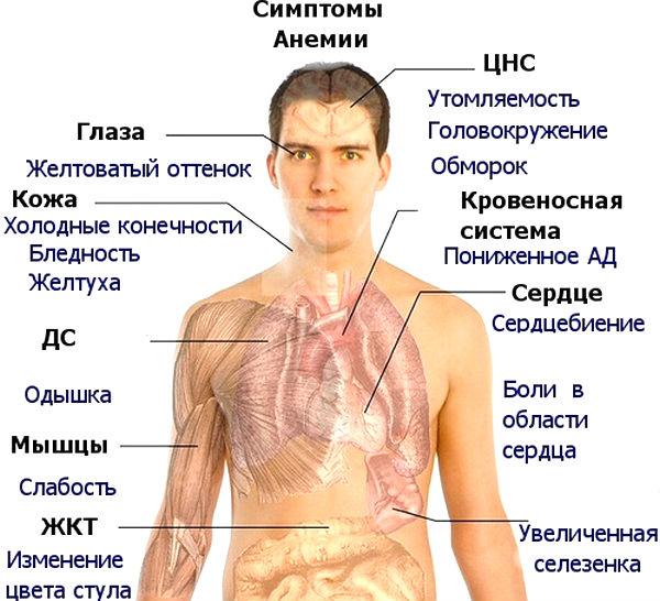 Симптомы недостатка витамина В12