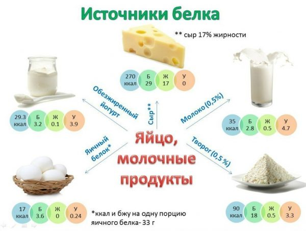 Продукты, содержащие белок, полезные для похудения
