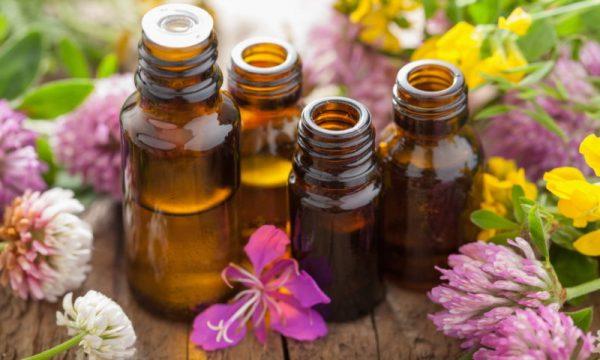 Народная медицина для лечения заед