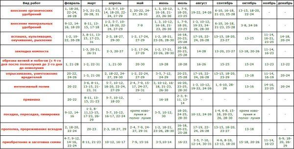 Календарь посадочных работ