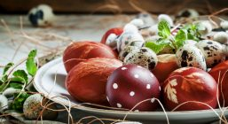 Easter colored eggs, quail eggs, twigs of willow on the white po