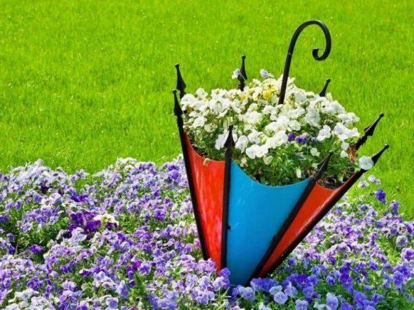 Цветник в использованном зонтике