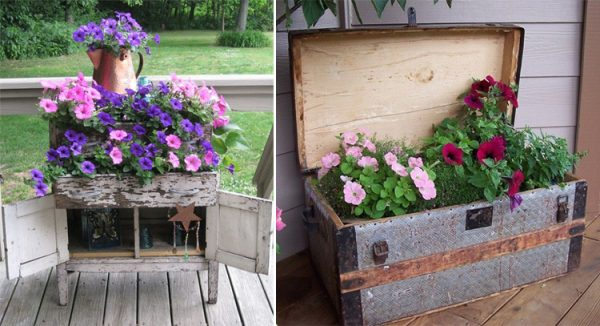 Цветущая клумба в деревянных ящиках