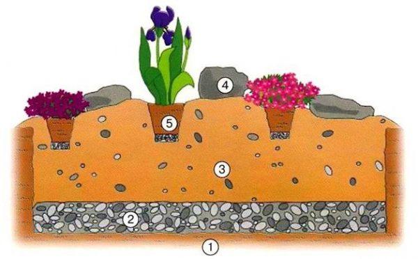Как высадить цветы на альпийской горке