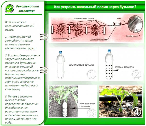 Как сделать капельный полив из пластиковых бутылок самостоятельно