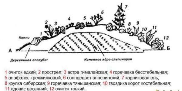 Схемы альпийских горок (с названиями растений)