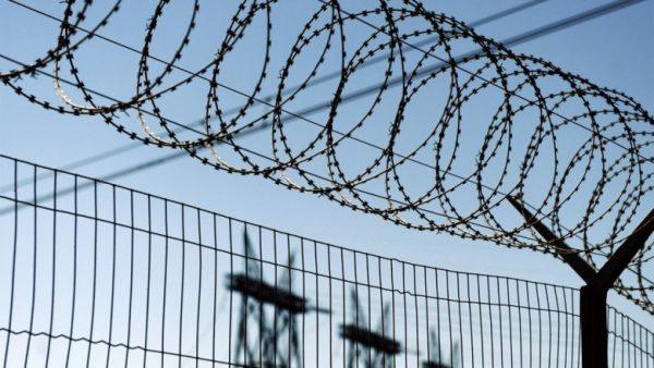 Амнистия по уголовным делам