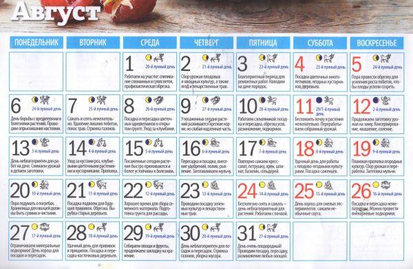 Календарь посадок на август месяц