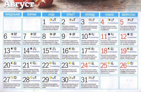 Календарь посадок на август 2018
