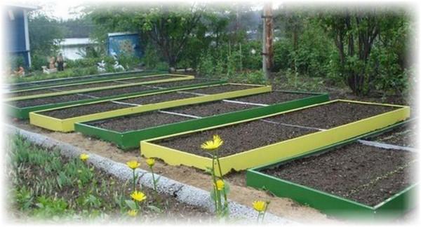 Подготовка грядки к посеву