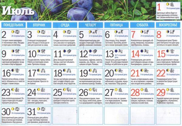 Календарь посадок на июль 2018 года