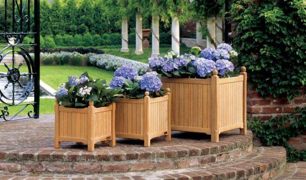 Цветы, растущие в деревянных ящиках