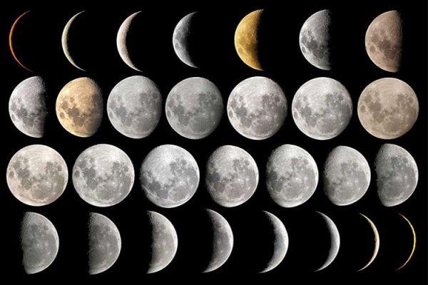 Влияние луны на работы в саду