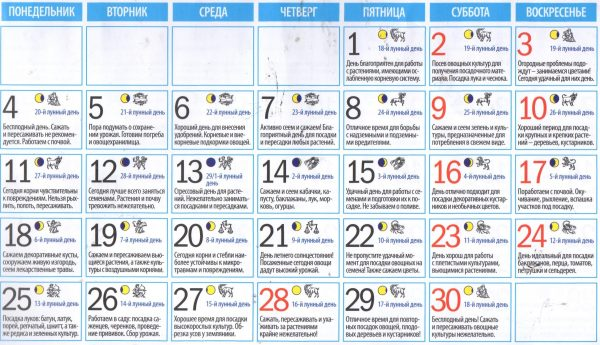 Календарь садовода и огородника на июль 2018 года