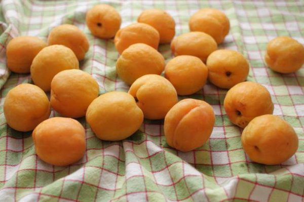 Замораживание целых абрикос на зиму