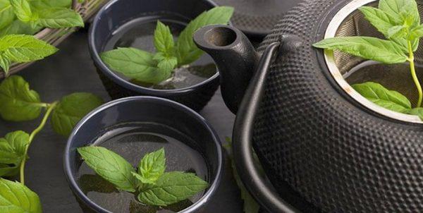 Самый вкусный и полезный чай из высушенной мяты