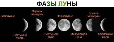 Сбор урожая по Лунному календарю