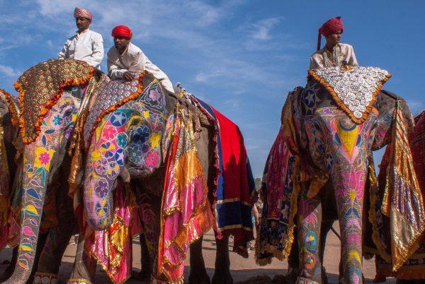 Не каждый житель Индии может позволить себе содержать слона
