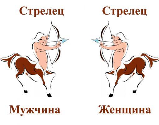 Женщина и мужчина стрельцы