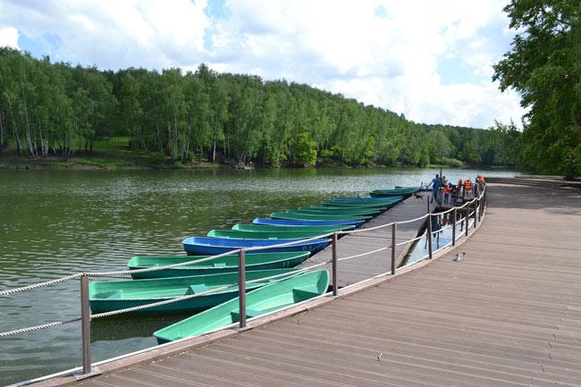 Тропаревский пруд в Теплом стане