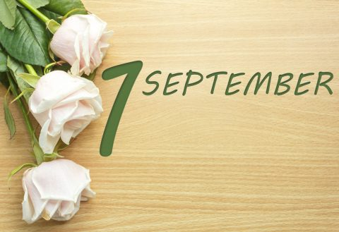 September 1, the roses on a wooden table
