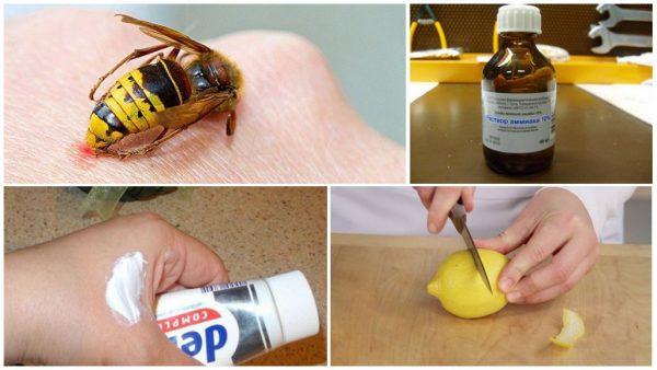 Народные средства при укусе осы