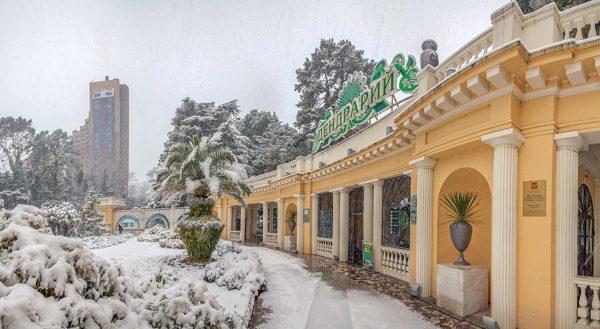 Новый год в Сочи 2019: выбираем лучший отель