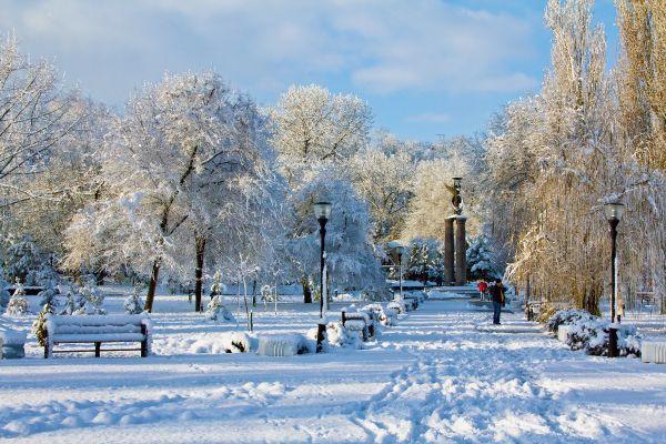 Какая будет зима 2018-2019 в Ростовской области: точный прогноз погоды