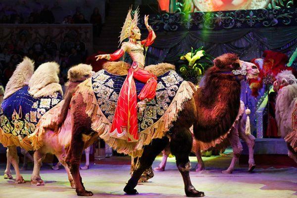 """Новогоднее цирковое шоу """"Песчаная сказка"""""""