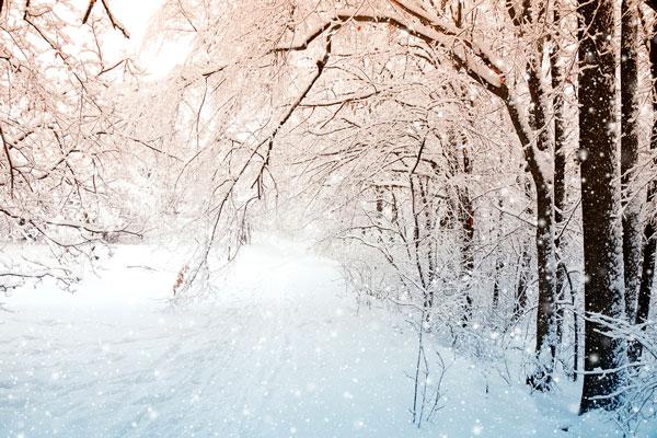 Гораздо холоднее окажется месяц январь