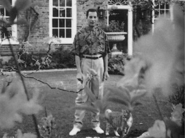 Фредди Меркьюри: биография, страшная болезнь и смерть