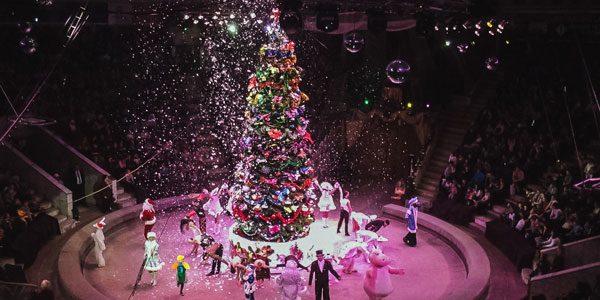 Новогодняя елка в Цирке на Цветном бульваре 2019
