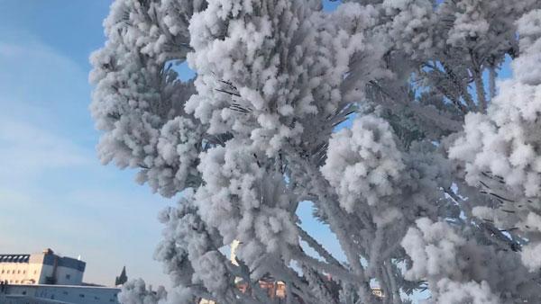 Прогноз погоды на декабрь