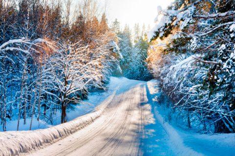 Какая будет зима 2018-2019 в Ростовской области