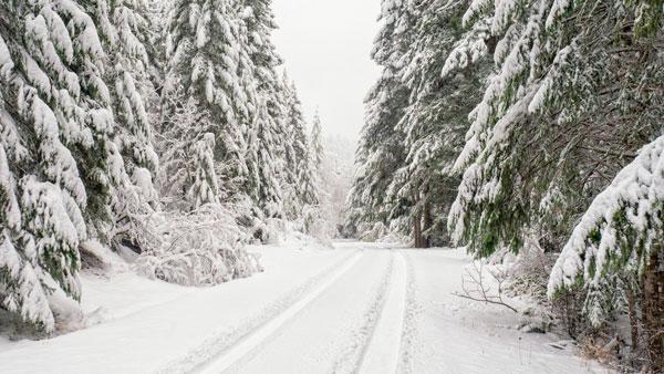 Зима в разные года может отличаться по температурным показателям