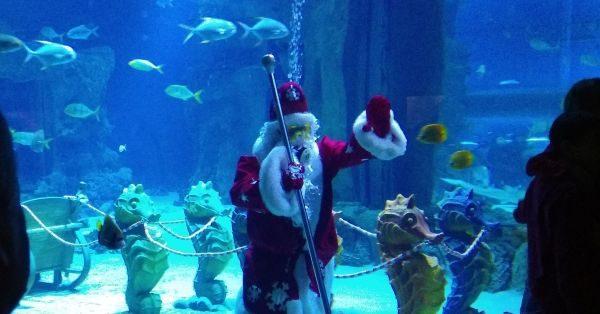 Подводный Дед Мороз