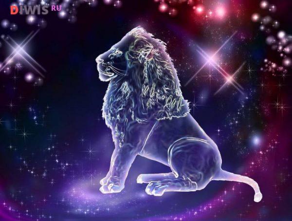 Лев Свинья